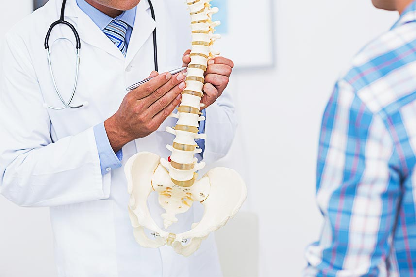 doctor explaining spine